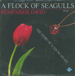 A Flock of Seagulls - Remember David