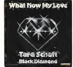 Tara Schaft & Black Diamond - What now my love